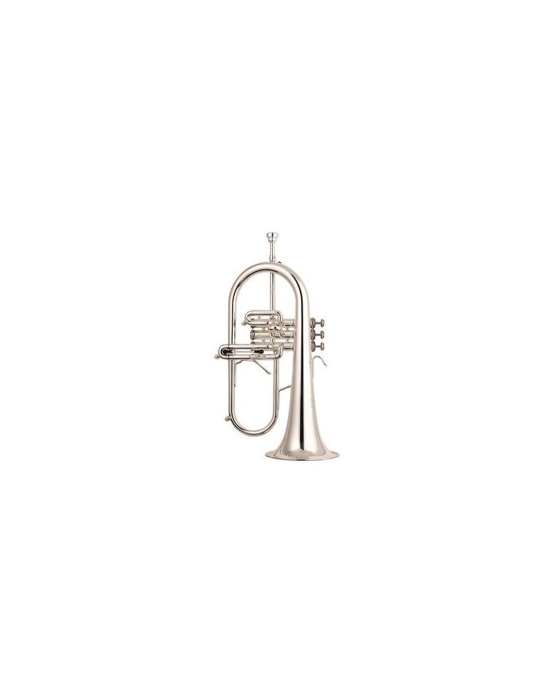 fliscorno y trompeta