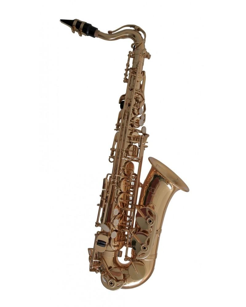 Saxofón Alto As-655 Conn Mib Para Niños