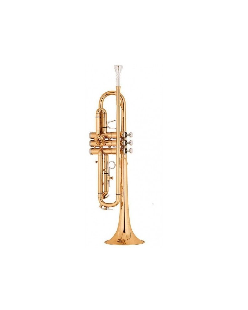 Trompeda DO profesional Mod. BAHH USA lacada